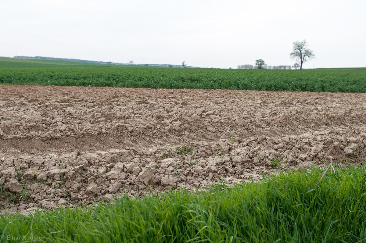 Agrarwüste